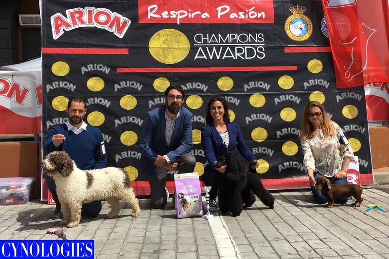 Concurso 13  RinconV 2018